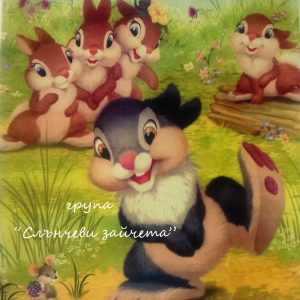 Група Сълнчеви зайчета